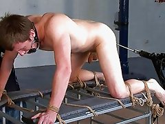 Tied up guy s is roughly drilled by a fucking machine