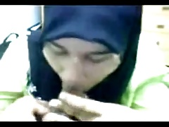 malay kerani blowjob