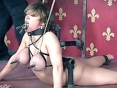 Busty bimbo Dee Williams destroyed with toys while bound BDSM
